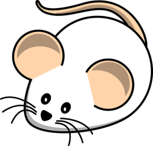 mouse-312012_640