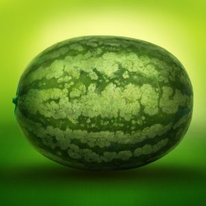 watermelon-630276_640